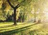 three-sabbaths-every-leader-needs-blog-1
