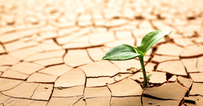 how to flourish in difficult circumstances
