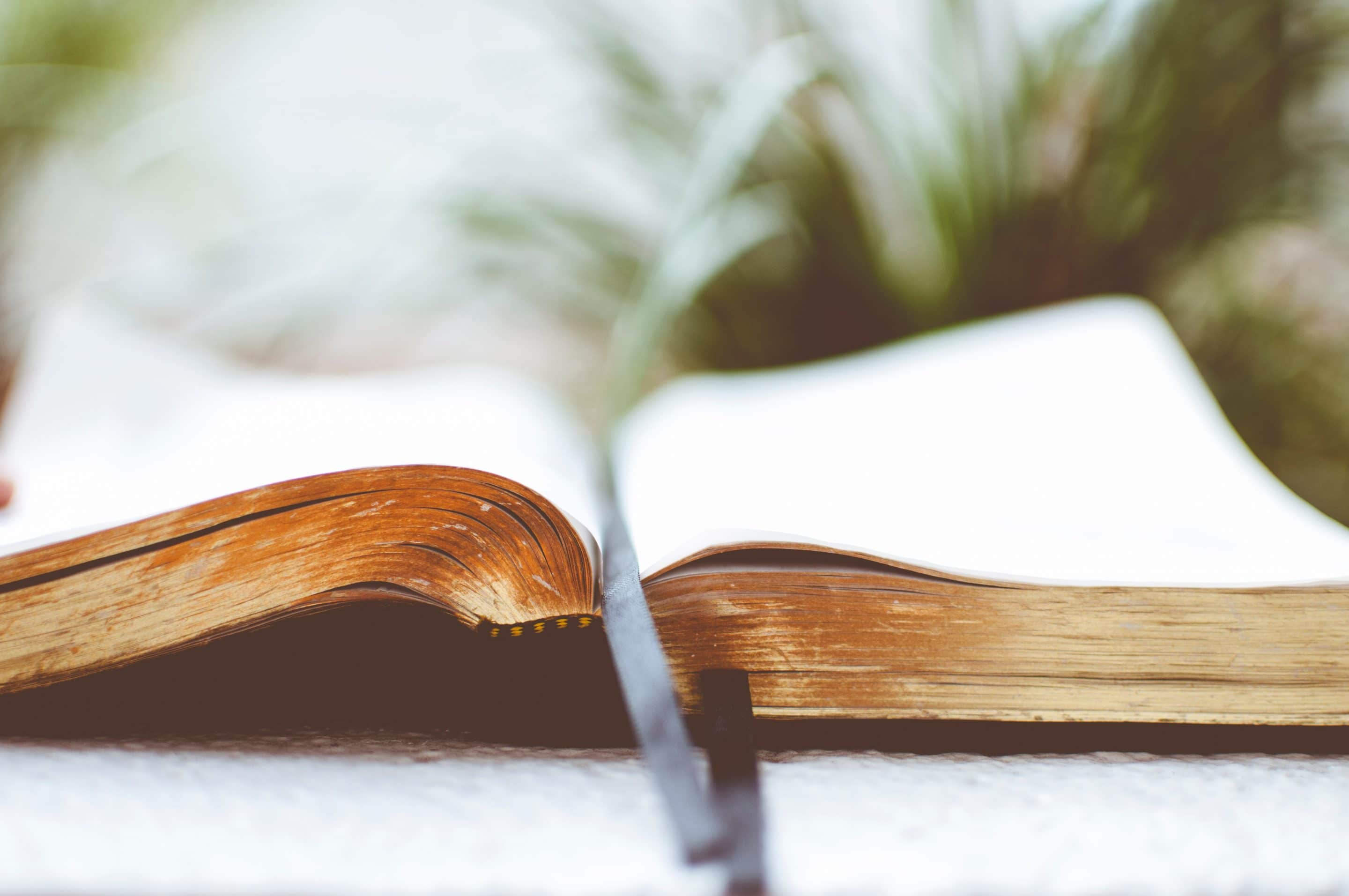 """Did you know that the words """"work"""" and """"toil"""" are mentioned over 480 times in the Bible? That alone indicates that God considers our work to be a very important aspect of our lives. Many scriptures are found throughout the Bible that support the importance of our work to God. Each contain God's views on […]"""