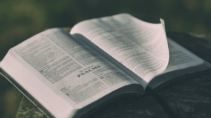 We know that we need to pray about our work. But what do we pray? How do we pray? And how can we know that our prayers for our work are aligned with God's desires? The Psalms are a great place to start. It is our prayer book. The Psalms cover the range of human […]